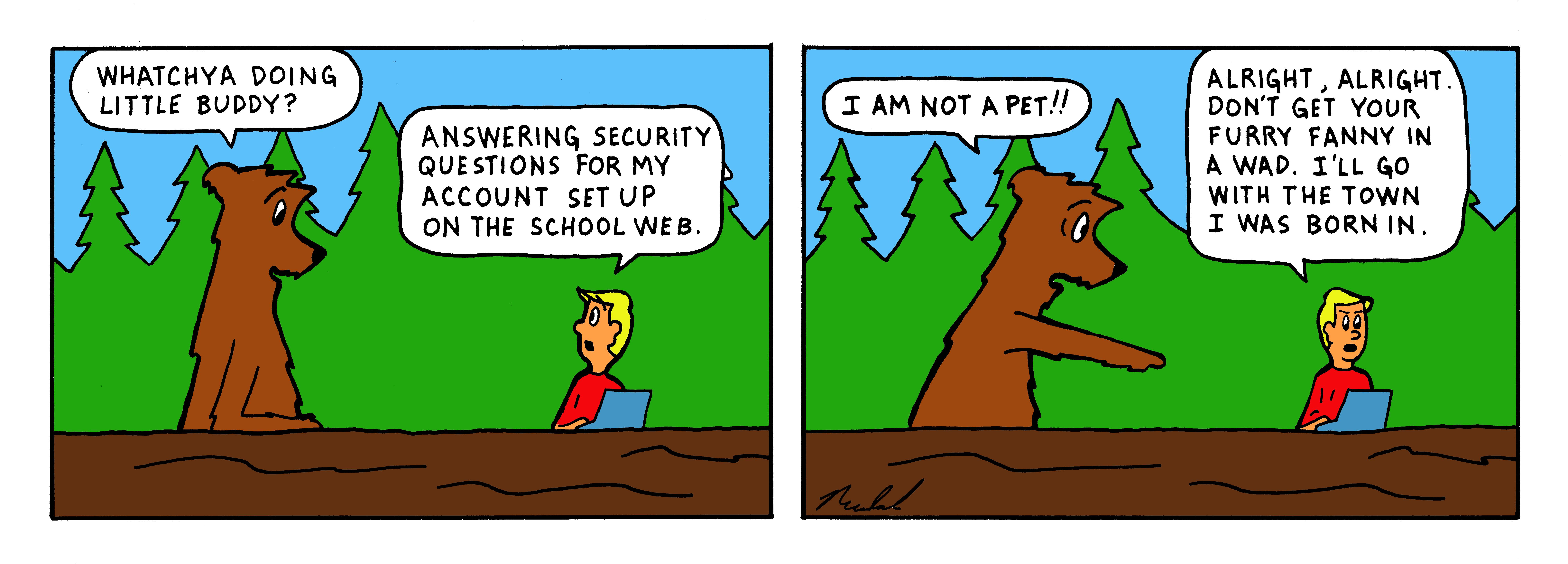 121 - color strip - security questions
